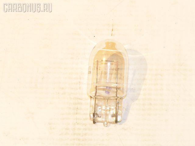 Лампочка. Фото 2