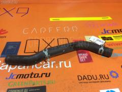 Патрубок радиатора ДВС на Honda Civic EU3 D17A, Нижнее расположение