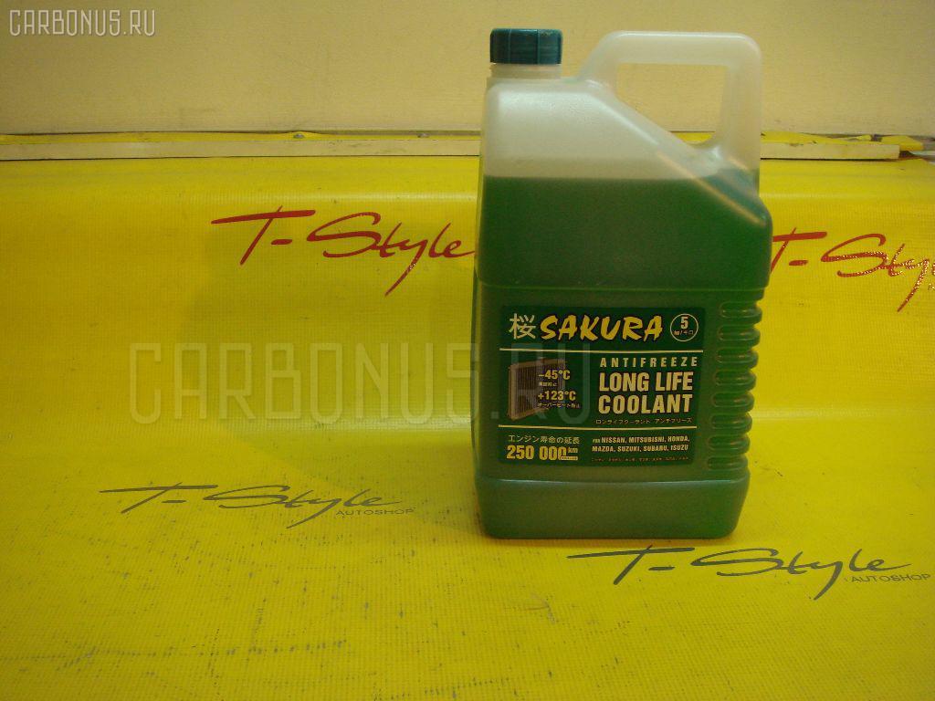 Жидкость в с-му охлаждения SAKURA Россия 38484 Фото 1