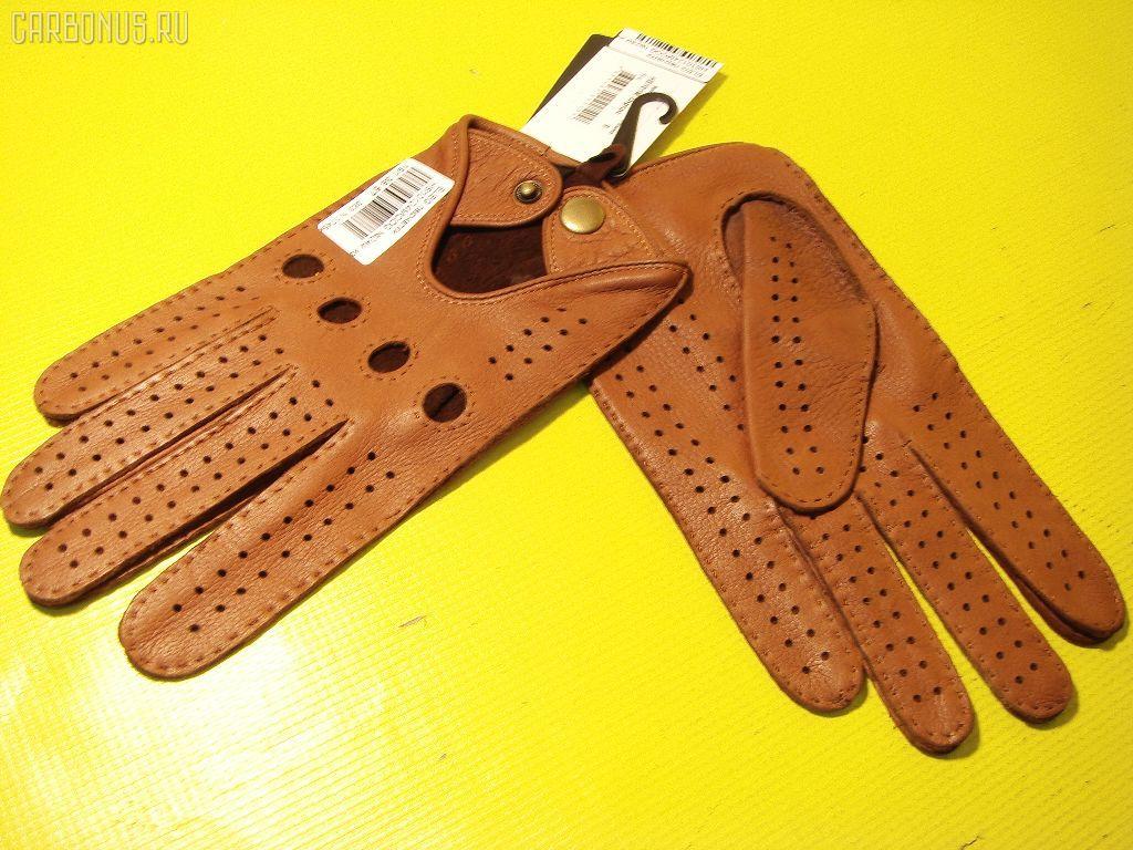 Перчатки ELEGANZZA. Фото 4