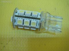 Лампочка DSIGN XELITE Co Ltd XT20-7310W 1891