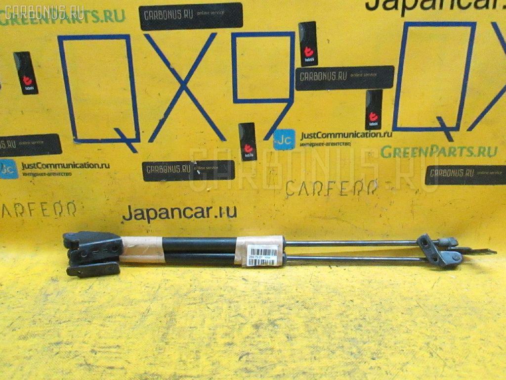 Амортизатор двери Nissan Dualis NJ10 Фото 1