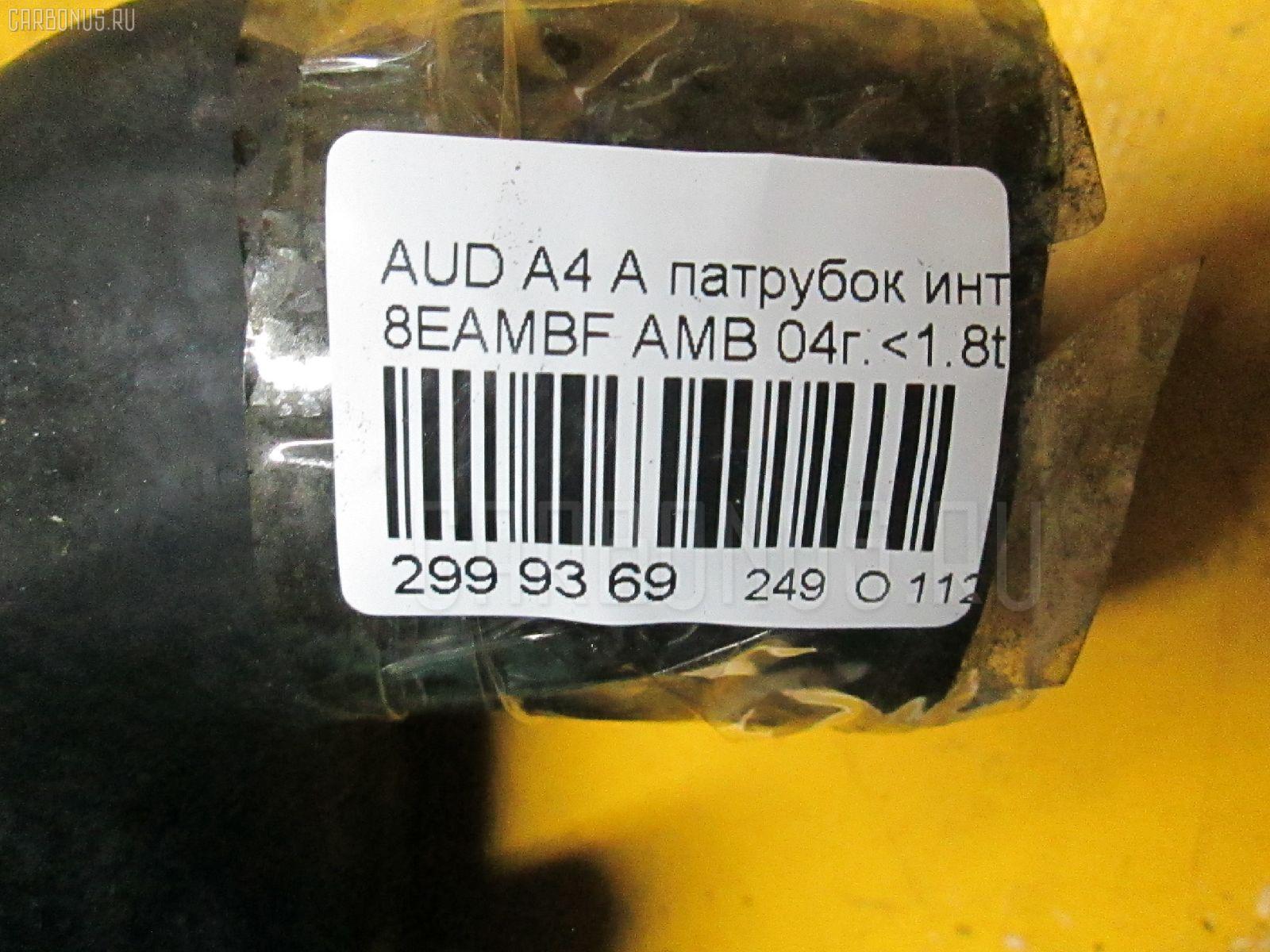 Патрубок интеркуллера AUDI A4 AVANT 8EAMBF AMB Фото 6