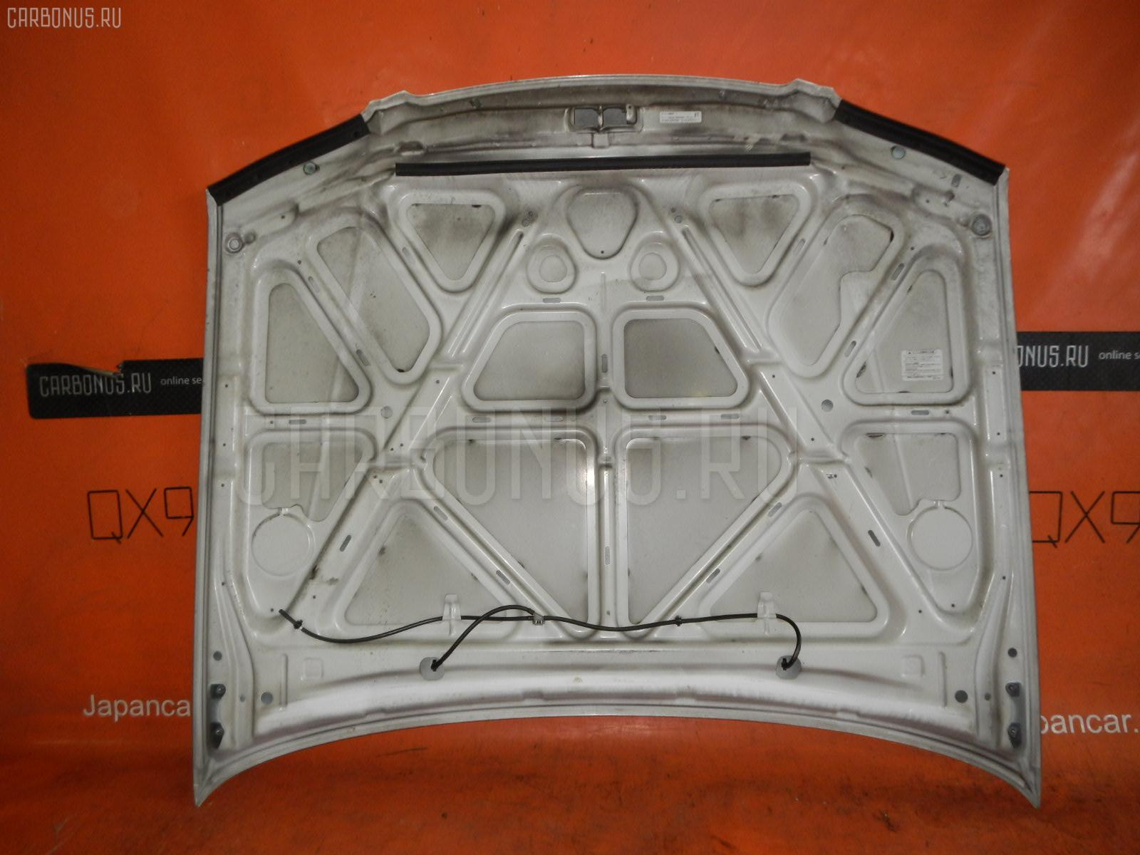 Капот NISSAN EXPERT VW11. Фото 1