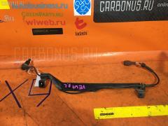 Датчик ABS на Nissan Expert VEW11 YD22DD, Заднее Левое расположение