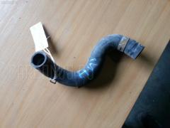 Патрубок радиатора ДВС TOYOTA ISIS ANM10W 1AZ-FSE Фото 1