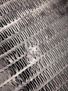 Радиатор ДВС TOYOTA HIACE LY161 3L Фото 2
