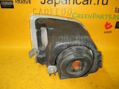 Туманка бамперная Honda Odyssey RA8 Фото 1