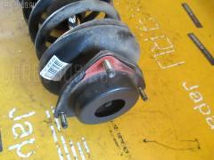 Стойка амортизатора Nissan Terrano TR50 ZD30DDTI Фото 2