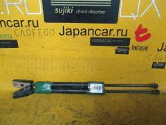 Амортизатор двери Toyota Corolla fielder ZZE123G Фото 1