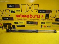 Амортизатор двери NISSAN LIBERTY RM12