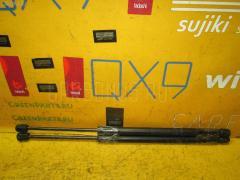 Амортизатор двери Toyota Isis ANM10G Фото 1