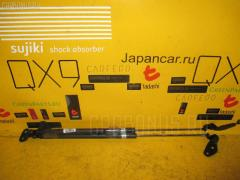 Амортизатор двери Mazda Demio DW3W Фото 1