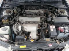 Ремень безопасности Toyota Caldina ST195G 3S-FE Фото 3