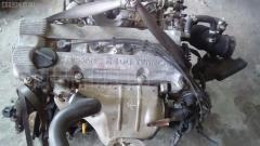 Двигатель Nissan Presage NU30 KA24DE Фото 8