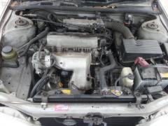 Решетка под лобовое стекло Toyota Vista SV40 Фото 5