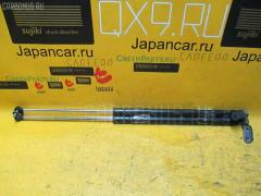 Амортизатор двери Nissan Avenir W11 Фото 1