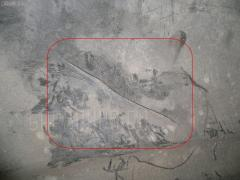 Защита двигателя NISSAN LARGO NW30 KA24DE Фото 2