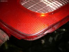 Стоп Nissan Wingroad WFY11 Фото 2