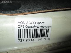 Капот Honda Accord wagon CF6 Фото 2