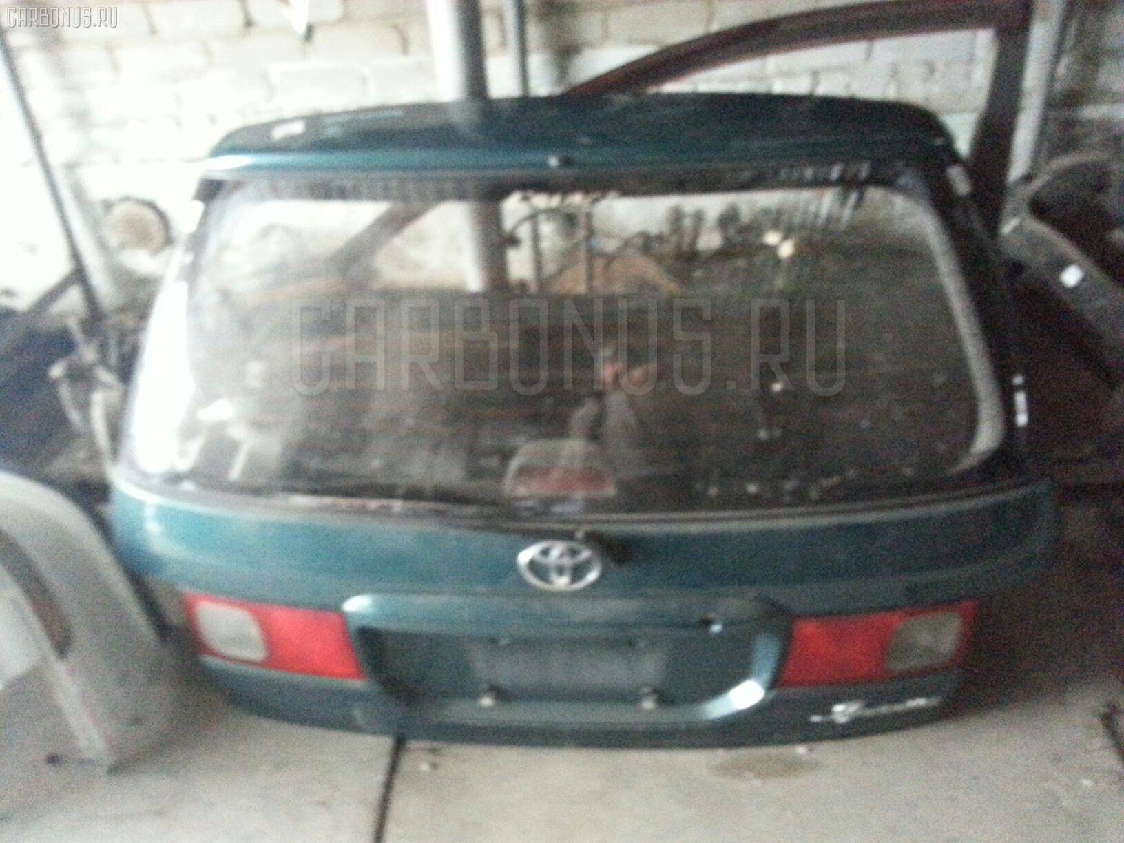 Дверь задняя Toyota Ipsum SXM10G Фото 1