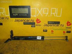Амортизатор двери Nissan Liberty PM12 Фото 1