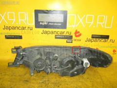 Фара Nissan Expert VW11 Фото 1