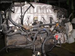 Двигатель NISSAN STAGEA WGC34 RB25DE Фото 13