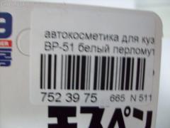 Автокосметика для кузова SOFT99 BP-53 Фото 2