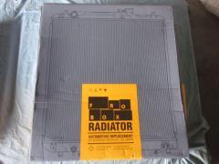 Радиатор ДВС Infiniti Qx56 JA60 VK56DE Фото 1