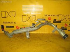 Заливная горловина топливного бака Toyota Gaia SXM15G 3S-FE Фото 1