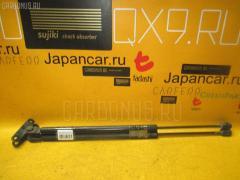 Амортизатор двери Nissan Terrano RR50 Фото 1