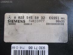 Блок упр-я MERCEDES-BENZ S-CLASS W220.175 113.960 WDB2201751A004448